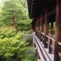 写真:東福寺 通天橋