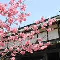 写真:弘前城 三の丸東門