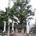 写真:日本橋由来記の碑