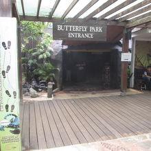 バタフライ パーク/世界昆虫館