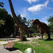 緑豊かで広大な公園
