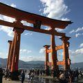 写真:嚴島神社 大鳥居