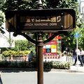 写真:銀座マロニエ通り