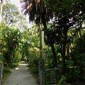 写真:南海学園 台北植物園