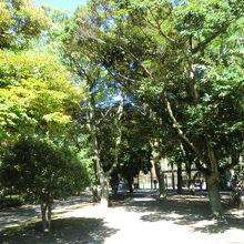 平潟湾の公園