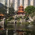 写真:中国庭園