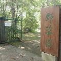 写真:帯広市野草園