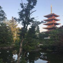 天橋立が見える古いお寺