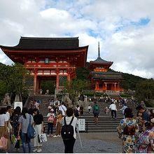 参拝客がいっぱい。和装の外国人も見慣れてしまう。
