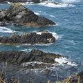 写真:トド島展望台