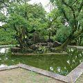 写真:広島城 桜の池跡