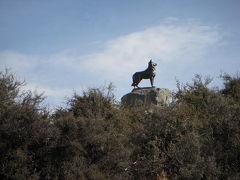 バウンダリー犬の像