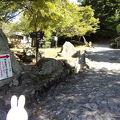 写真:平松茶屋