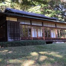 初めて入苑しました。100年の杜は厳かで緑豊富でした。