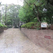 都心の住宅街にある公園としては広めです。