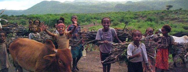 エチオピア南北周遊17日間?アルバミンチヘ