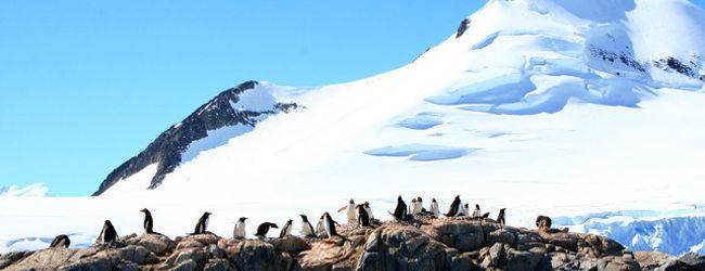 白い大陸・南極への旅 0・・旅いつまでも・・