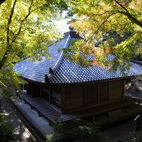 九州の秋に会いに行く【1】 〜旅立ち、そして国東へ〜
