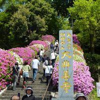 連休は佐賀県で(大興善寺の満開のつつじに癒される)