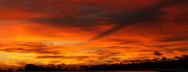 ♪♪♪初アマンはパマリカン島で♪♪♪ (4日...