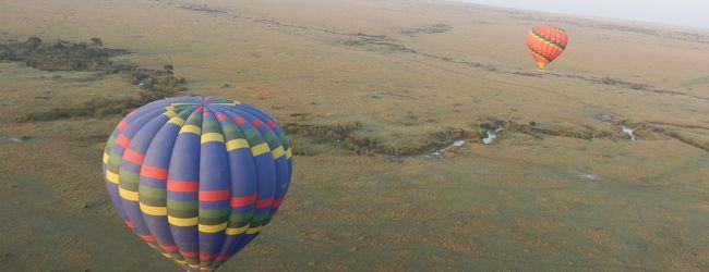 ケニア マサイマラと湖 5泊8日 その2...