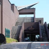 ミュージアムパーク自然博物館見学&周辺バードウォッチング [2011](2) 哺乳類編