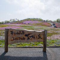 茶臼山高原 天空の花回廊