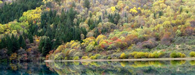 秋の童話 四川への一人旅 九寨溝