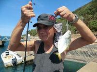 クックタウンと言う町に来ました、魚釣りとビリヤード大会に参加。