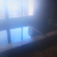 130105-06新春秘湯の旅:身延山久遠寺と奈良田温泉と三島の鰻【2】