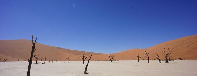 2012-13 ナミビア旅行記その1