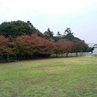 日本の旅 関西を歩く 大阪府羽曳野市応神天皇陵周辺