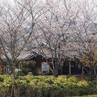 中年男子☆青春18きっぷで出掛けよう 2013春☆ 「ローカル線の春景色と北条の五百羅漢」