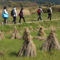 奈良も5度目なら〜♪ (2)山の辺の道