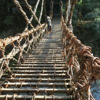 2泊3日四国旅行(徳島・香川)2日目 大歩危・小歩危・かずら橋