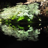 桜前線を追いかけて【1】〜米沢城址で夜桜見物〜