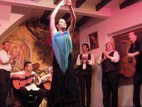 スペイン見聞録2:フラメンコに陶酔したセビーリャ