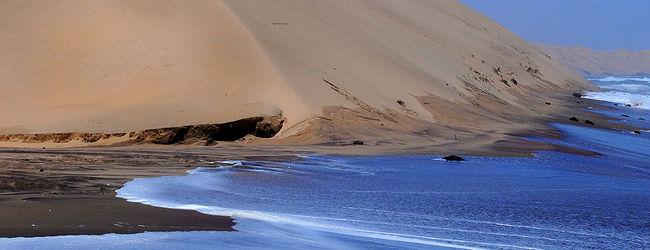 海砂漠でイルカとご対面!!〜サンドウィッ...