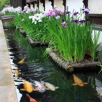 山陰の小京都でSLとニコちゃんマーク。