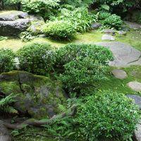 奈良からいつもの京都へ(二日目・完)〜堀川通り沿いに、北山通り・北大路通りから三条通りまで下がって、お昼は詩織庵でまったり〜