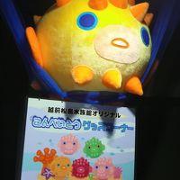 大幅リニューアル さらにパワーアップ 1年ぶりに堪能しました  【越前松島水族館】 今年もえかったな・・・・ こんぺいとうのぬいぐるみが欲しい