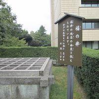 「秋の乗り放題パス」で福井マラソンに参加(その1)