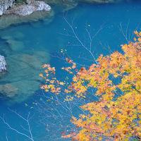夜行日帰りで紅葉と温泉を〜抱返り渓谷と水沢温泉郷〜