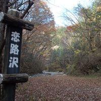 紅葉の鬼怒川温泉から川治温泉ハイキング〜紅葉の素晴らしい少しハードな恋路沢ハイキングコース〜