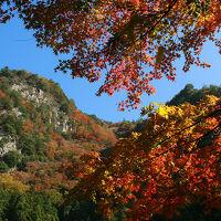 紅葉見頃の香落渓と赤目四十八滝へ
