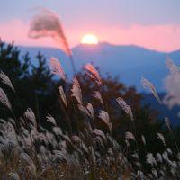 【紅葉】 赤目四十八滝と曽爾高原 ♪♪