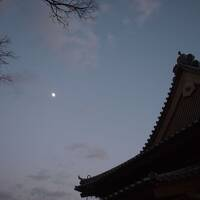 ★旅するななつぼし 2013.12 その1 佐賀★