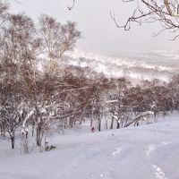2014冬 niseko snowbording&さっぽろグルメ 2度美味しい旅