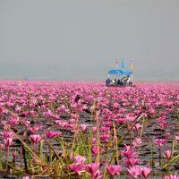 タイ旅行 (5) コン・ケーンからウドン・ターニーまで