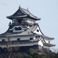 日本の旅 東海地方を歩く 愛知県犬山市の「ライン大橋」周辺から見る犬山城(いぬやまじょう)周辺